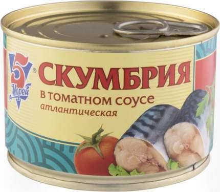Скумбрия атлантическая 5 Морей в томатном соусе 250 г