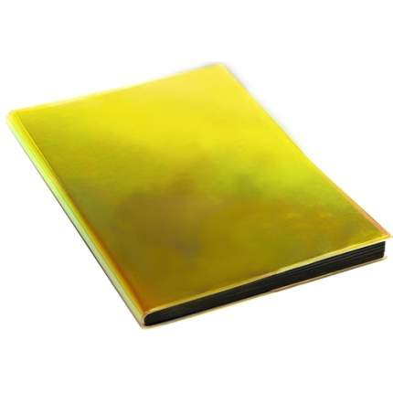 "Книга для записей ""CHAMELEON"" А5, 100л"