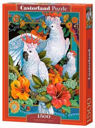 Пазл Castorland Белые попугаи 1500 элементов