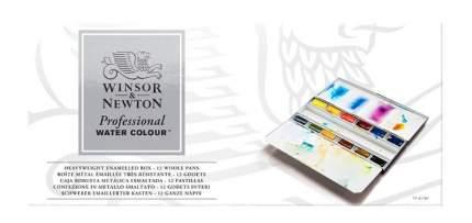 Акварель Winsor&Newton Professional Enamelled Box 12 цветов