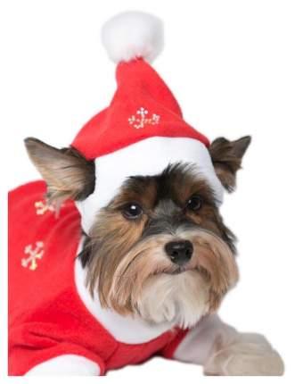 Колпак для собак Yoriki Дед Мороз