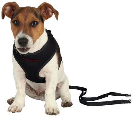 Шлейка для щенков с поводком Trixie Puppy Soft Harness with Leash, черный