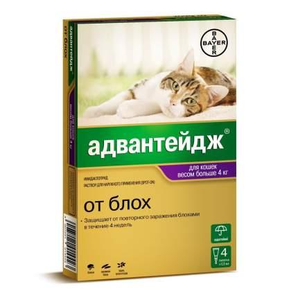Капли для кошек от блох, вшей Bayer Golden Line Адвантейдж 80К, массой более 4кг, 1пипетка