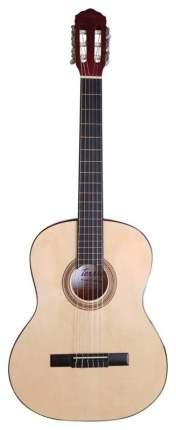Классическая гитара TERRIS TC-390A NA  4/4