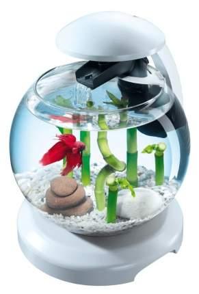 Аквариумный комплекс для рыб Tetra Cascade Globe, бесшовный, белый, 6,8 л