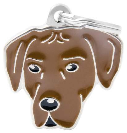 Адресник на ошейник для собак My Family Colors Родезийский риджбек, средний, 3х2,7 см