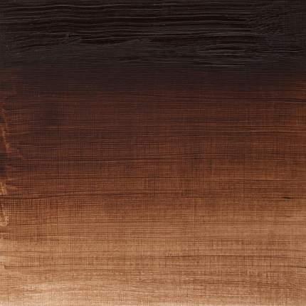 Масляная краска Winsor&Newton Winton жженая умбра 37 мл