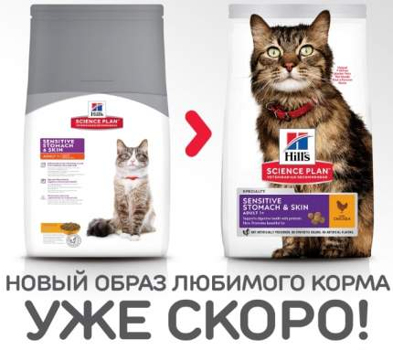 Сухой корм для кошек Hill's Science Plan Sensitive Stomach & Skin, курица, индейка, 1,5кг