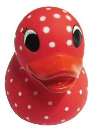 Игрушка для купания Creative Studio Резиновый утенок: красный в горошек