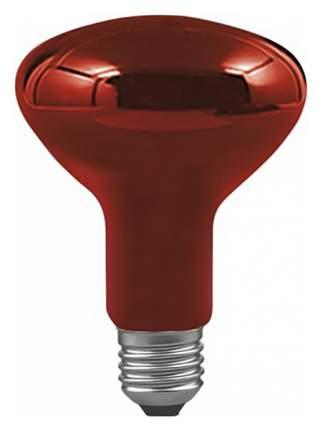 Лампа накаливания рефлекторная Е27 100W груша инфракрасная 82966