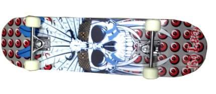 "Скейтборд Action PWS-620 31""х8"""