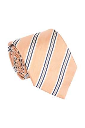 Галстук мужской Cafe Coton CLARENS 5 разноцветный