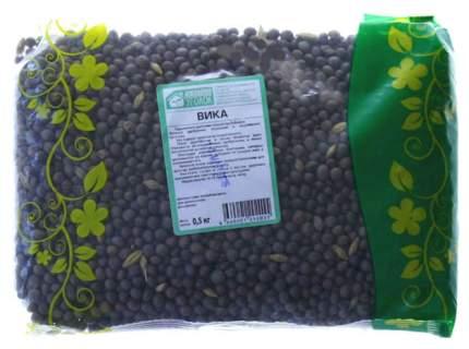 Семена Сидерат Вика, 500 г Зеленый уголок