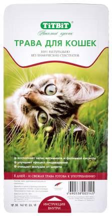 Лакомство для кошек TiTBiT Лакомый кусочек семена, трава, 40 г