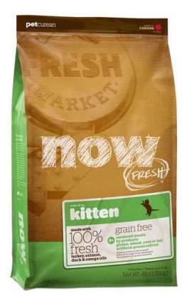 Сухой корм для котят NOW Grain Free, индейка, утка, овощи, 1,82кг