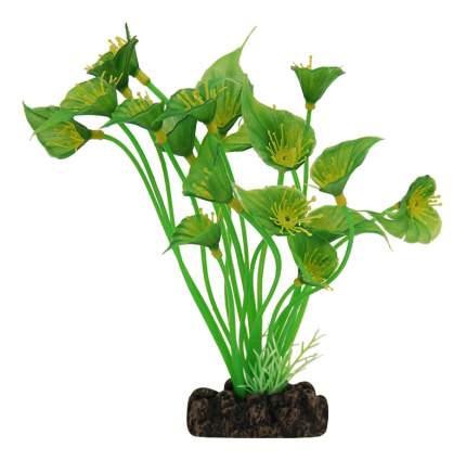 Laguna Растение Сингониум, 18 см
