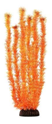 Laguna Растение Амбулия оранжевое, 46 см