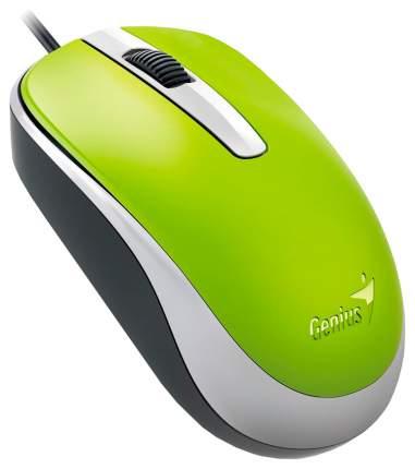 Проводная мышка Genius DX-120 Green (31010105105)