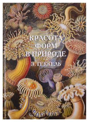Книга БЕЛЫЙ ГОРОД Красота форм в природе