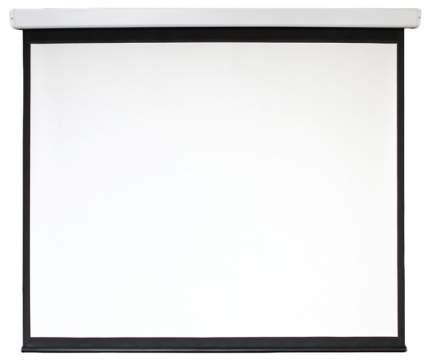 Экран для видеопроектора Digis Electra-F DSEF-16906