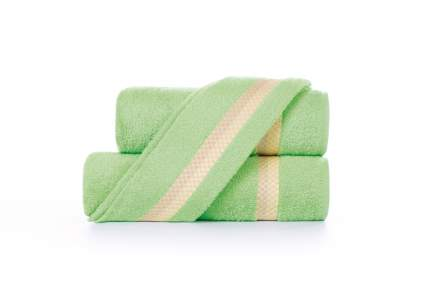 Полотенце универсальное Aquarelle Глициния зеленый