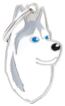 Адресник на ошейник для собак My Family Colors Сибирский хаски, средний, 2,2х3,7 см
