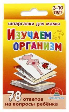 """Набор карточек Шпаргалки для мамы """"Изучаем организм 3-10 лет"""""""