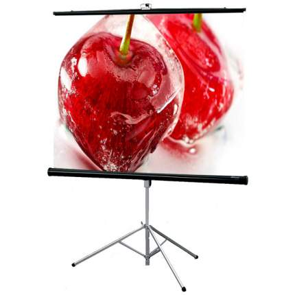 Экран для видеопроектора Draper Consul NTSC 3:4 127*169 XT1000E MW (216020B)