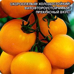 Семена Томат Непасынкующийся Желтый, 0,1 г, Уральский дачник