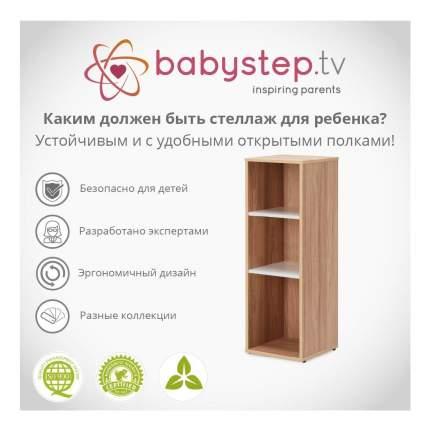 Стеллаж для хранения игрушек Babystep Праздник 1000 вертикальный