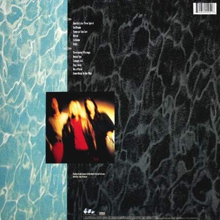 Nirvana Nevermind (LP)
