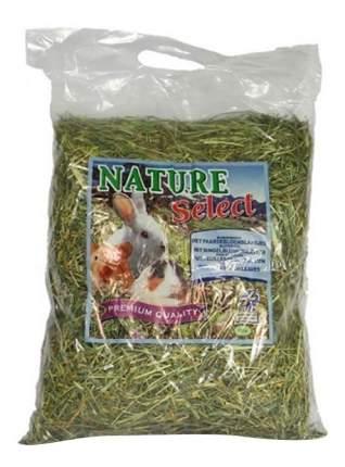Сено для грызунов Witte Molen Blossomhay Carrot 0.5 кг 1 шт