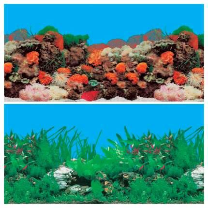 Фон для аквариума Laguna Риф/пресноводный, ламинированная бумага, 1500x50 см
