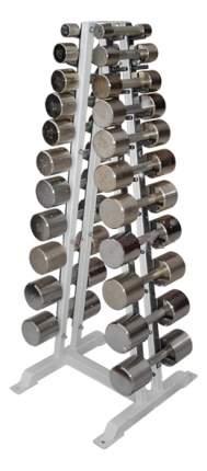 Гантельный ряд Osimetria Funbox Media от 10 до 50 кг