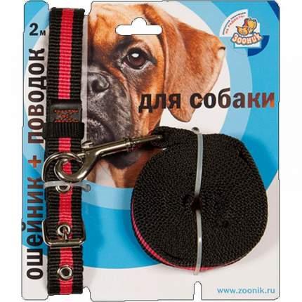 Ошейник и поводок для собак Зооник, 20 мм х 47 см