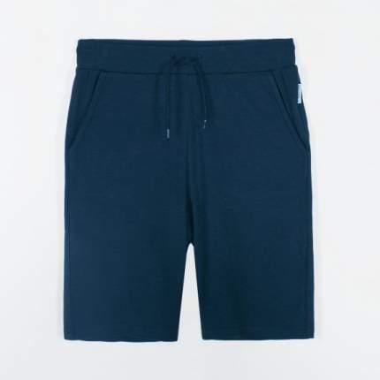 Бриджи для мальчика Coccodrillo, 134 р-р, цв.синий