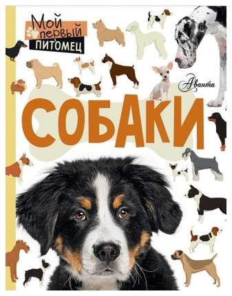 Книга Аст крылова Анна Собаки