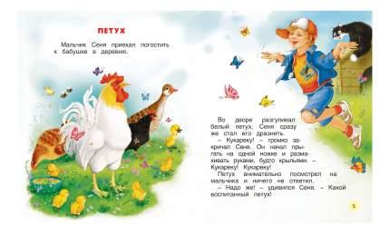 Книжка Росмэн У Бабушки В Деревне
