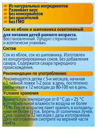 Сок ФрутоНяня Яблоко и шиповник с 5 мес 200 мл