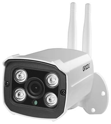 IP-камера Ginzzu HWB-1033X