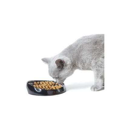 Миска Savic Whisker для кошек (19 х 15 х 3,5 см)