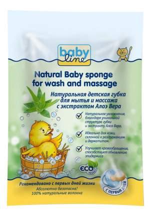 Натуральная детская губка babyline для мытья и массажа с экстрактом алоэ вера