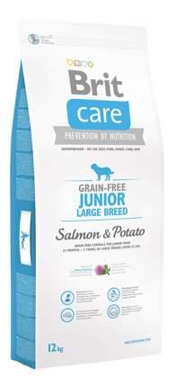 Сухой корм для щенков Brit Care Junior Large Breed, лосось, картофель, 12кг