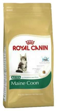 Сухой корм для котят ROYAL CANIN Maine Coon Kitten, мейн-кун, домашняя птица, 2кг