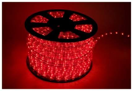 Дюралайт XMAS-GROUP DL-LED-100-3R Красный