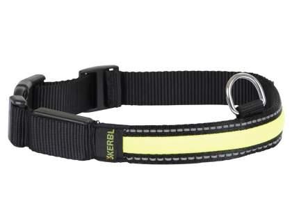 Ошейник для собак Дарэлл ECO-LUMI, светоотражающий, синтетический, черный, 20мм, 32-41см