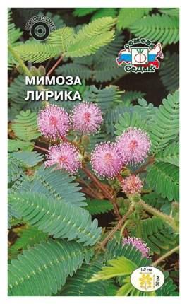 Семена Мимоза стыдливая Лирика, 0,1 г СеДеК