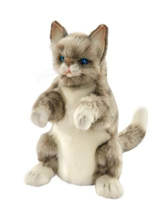 Мягкая игрушка Ebulobo на руку для кукольного театра Hansa Кот жаккардовый 30 см