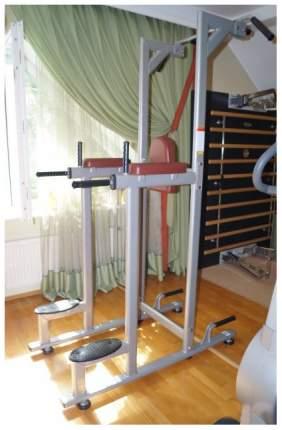 Турник/пресс/брусья Bronze Gym H-027