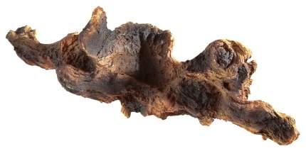 Коряга для аквариума Ferplast BLU 9170 Коряга, полиэфирная смола, 59,5х28х8 см
